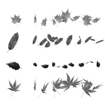 Leaf · Dead leaf brush