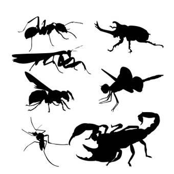 곤충 브러쉬