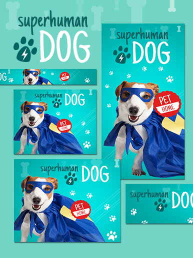 Banner de web de perro sobrehumano