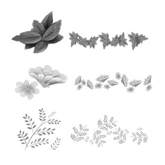 Pflanzenbürstenset