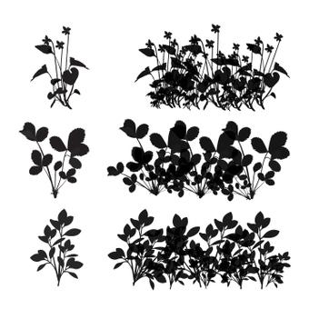 Набор кистей для растений